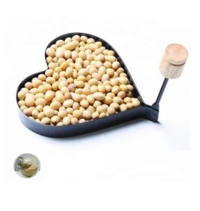 China Soybean Seed Extract, Soybean Seed Extract