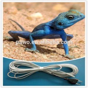 8m Electrical Cable/Silicone Reptile Heating Cable in Chinese Factory pictures & photos