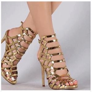 a88807dc5df22 Sexy Fashion and Elegant High Heel Women Shoes
