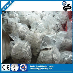 Ratchet Tie Down Polyester Webbing Material pictures & photos