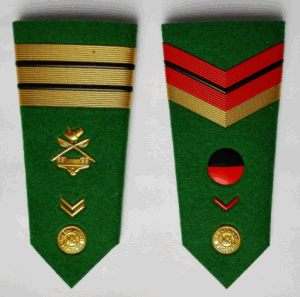 Army Epaulet pictures & photos