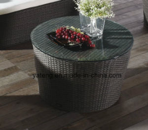 Indoor Furniture Living Room Coffee Table Rattan Coffee Table Hotel Coffee Table pictures & photos