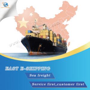 Wholesale Sea Service