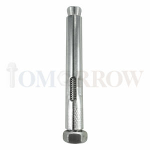 Hot Selling High Quality Stainless Steel 304/316 Anchor Bolt pictures & photos