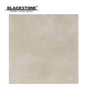 Ceramic Glazed Rustic Tile Matt Surface From Foshan 600X600 (BCT03) pictures & photos