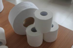 Toilet Paper, Toilet Tissue, Bathroom Tissue Roll pictures & photos