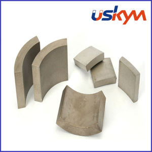 Segment Samarium Cobalt Magnets (A-003) pictures & photos