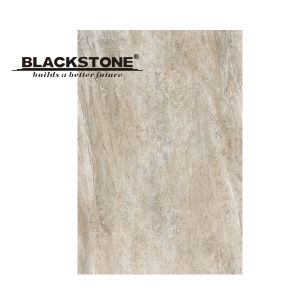 New Design Glazed Porcelain Floor Tile 600X900 (16990104) pictures & photos