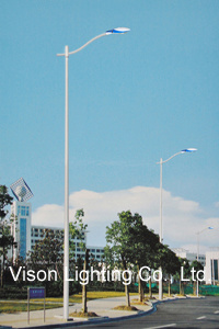 Sigle Arm Street Lighting with Pole