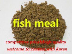 Protein Powder Fish Meal for Animal Feed with High Quality