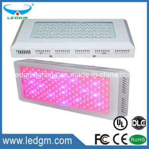2017 Plant Growth Greenhouse Red Blue 150W Square LED Grow Light pictures & photos