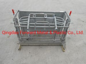 Wholesale Animal Products