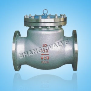 ANSI Flanged Swing Check Valve (Type: H44H)