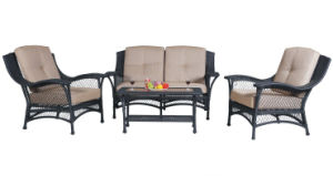 Rattan Furniture Set (HZD-R009)