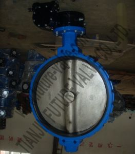 Dn700 DIN GOST Pn10 Wafer Butterfly Valve with Gearbox (D371X-10)