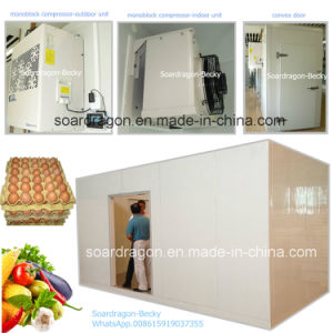 PU Cold Room Walk in Chiller Stores Egg and Vegetable pictures & photos