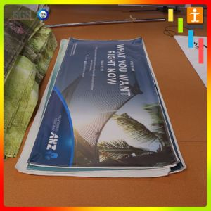 Customed Vinyl Banner for Cosmetic Advertising (TJ-XZ (2)) pictures & photos
