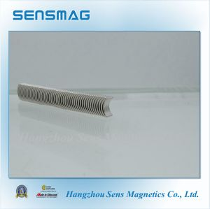 High Quality Customized Permanent NdFeB Arc Magnet for Automation Used pictures & photos