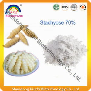 GMP Factory Supply Stachyose/Raffinose Stachyose/Stachyose Tetrahydrate Powder pictures & photos