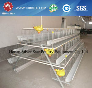 Best Selling a Type Chicken Cage for Layers pictures & photos