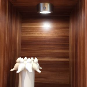 LED Down Light for Cabinet or Wardrobe