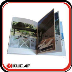 Custom Offset Printing Products Paper Brochure pictures & photos
