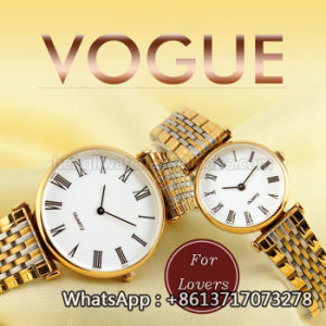 2016 New Style Quartz Watch, Fashion Stainless Steel Watch Hl-Bg-189