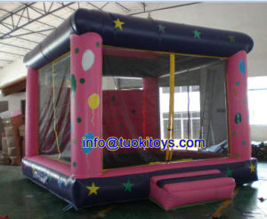 Brend New Inflatable Castle for Amusenment Park (A005)