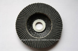Abrasive Fiberglass Backing Pads (T27/T29) pictures & photos