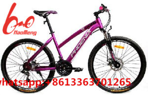 2017new Model Lady Mountain Bike/Bicycle/MTB