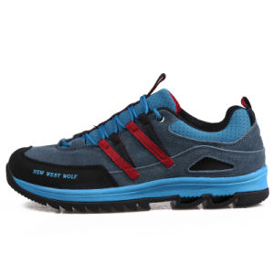 Hiking Mountain Climbing Sports Shoes for Women (AK8911) pictures & photos