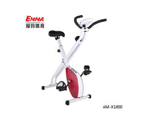 Indoor Mini Magnetic Exercise Bike (X1000P) pictures & photos