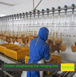 Poultry Equipment pictures & photos