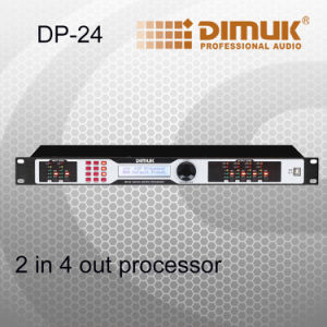 2 in 4 out Digital Processor (DP-24)