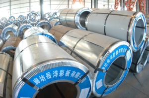 Color Coated Coil Sheet