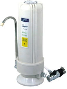 Counter Top One Stage Water Purifier (RY-CT-W1) pictures & photos