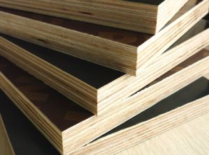 Film Faced Plywood (HTFP-003)