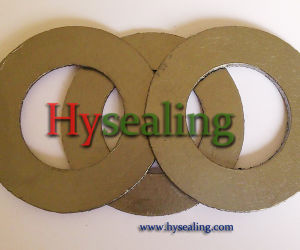 Reinforced Graphite Gasket with Self Lubrication pictures & photos