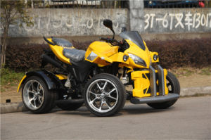 EEC/Coc Road Legal 250cc ATV Quad with 2 Seat (jy-250-1A) pictures & photos