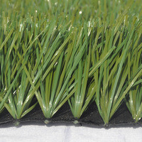 12000 Dtex High Quality Synthetic Grass Turf for Soccer Field pictures & photos