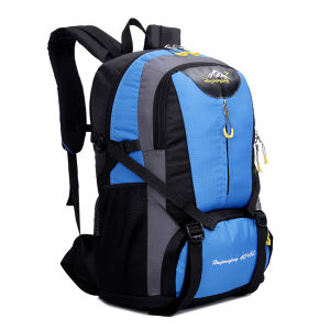 OEM Fashion Wholesale Big Backpack Bags pictures & photos