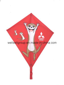 Funny Polyester Kites with Printing for Gift pictures & photos