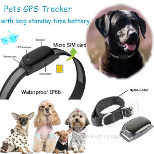 Waterproof IP66 Pet GPS Tracker with Real-Time Monitoring & Geo-Fence (EV-200) pictures & photos