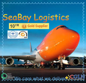 Freight Forwarder/ Logistic Service From China to Europe pictures & photos