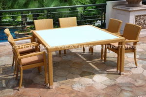 Dining Set (GT-27071S) for Hotel and Home
