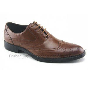 Men′s Dress Shoes / Office Footwear with Embossing (HDS-S06)