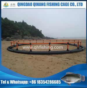 Fish Farming Use HDPE Net Cage in The Sea pictures & photos