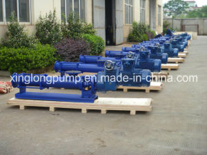 Xinglong Eccentric Positive Dispacement Single Screw Pumps for Various Fluids pictures & photos