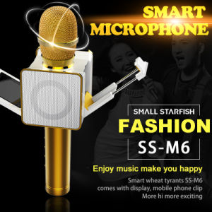 Newest DIY Ss-M6 Wireless 4.0 Bluetooth Karaoke Mic Speaker Golden Echo Microphone with LED Display and Clip for Android Ios