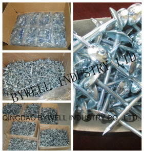 Zinc Roofing Nails with Smooth and Twisted Shank